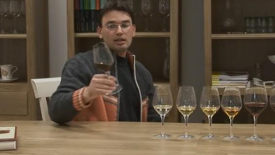 Как да разчитаме цветовете на виното?