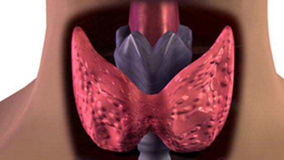 Проблеми с щитовидната жлеза и бременост
